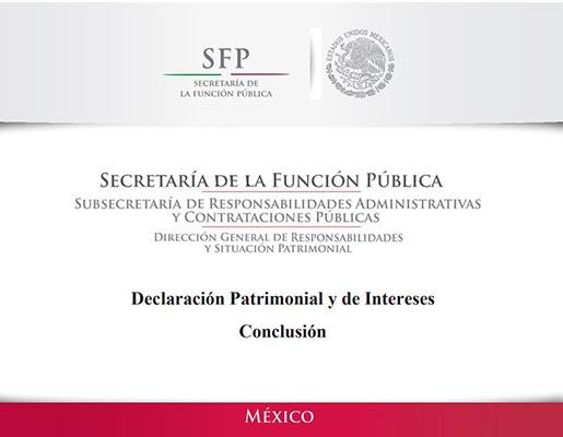 Declaración Patrimonial y de Intereses Conclusión